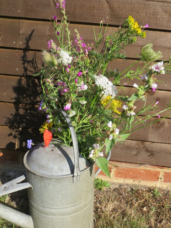Watering can filled with wildflowers