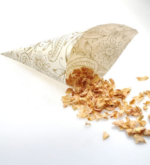 Ivory and gold confetti cones