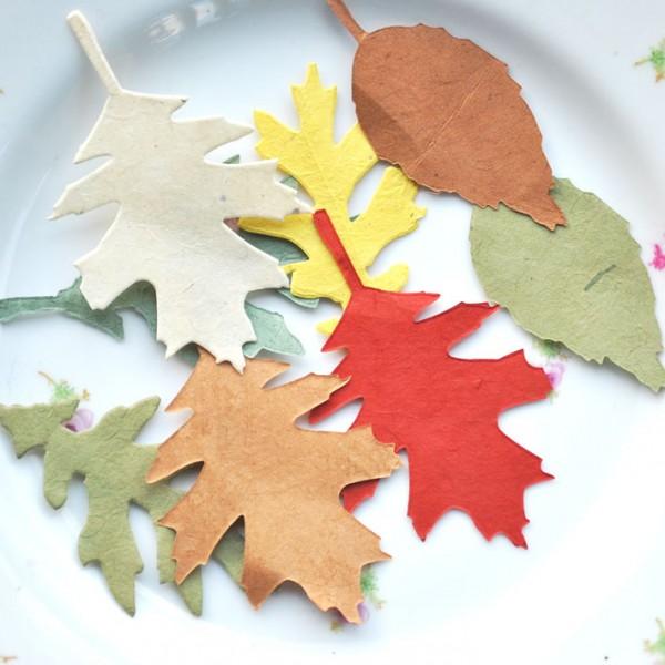 Lokta paper leaves