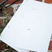 Recycled card with petals
