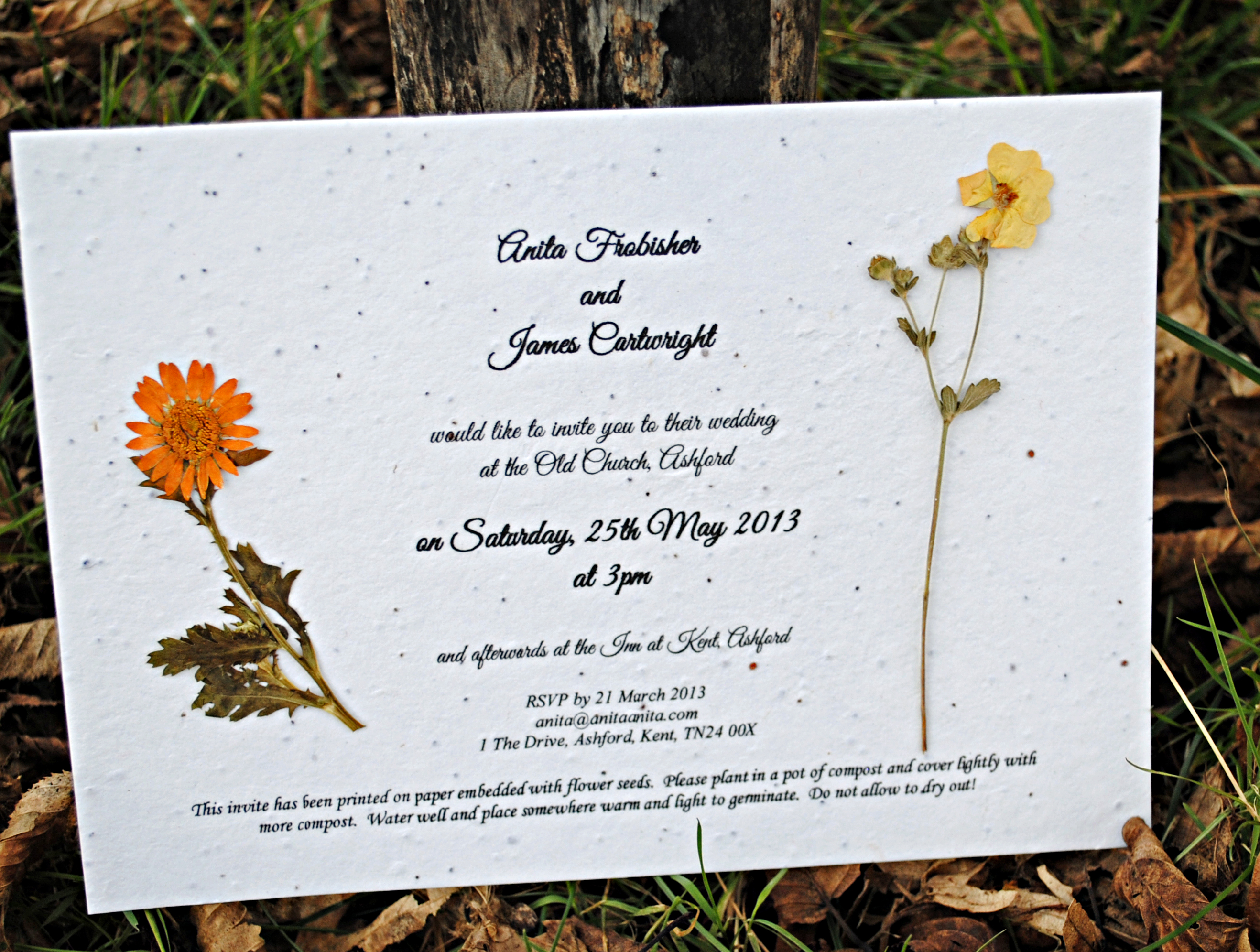 flower seed paper invitations - Yeni.mescale.co