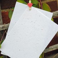 Recycled & Seeded Papers & Envelopes