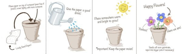 How to plant seed paper