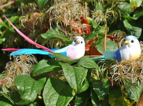 Party birds decorations