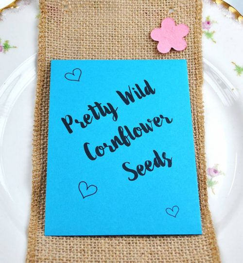 Cornflower seeds wedding favour