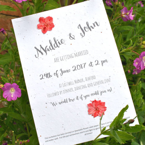 Seed paper invite and pressed flowers