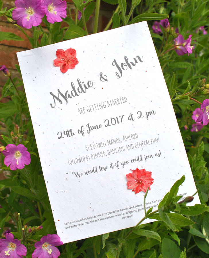 Attrayant Seed Paper Invite And Pressed Flowers