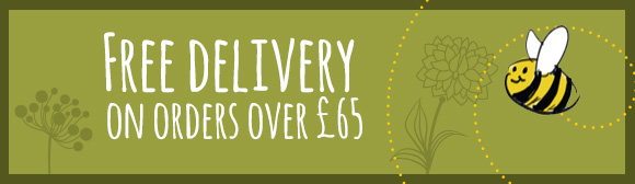 Free Delivery Ad