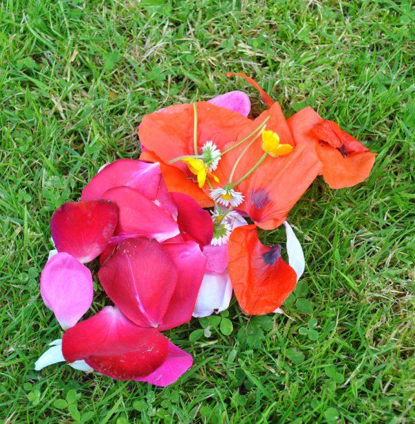 Natural petals for confetti