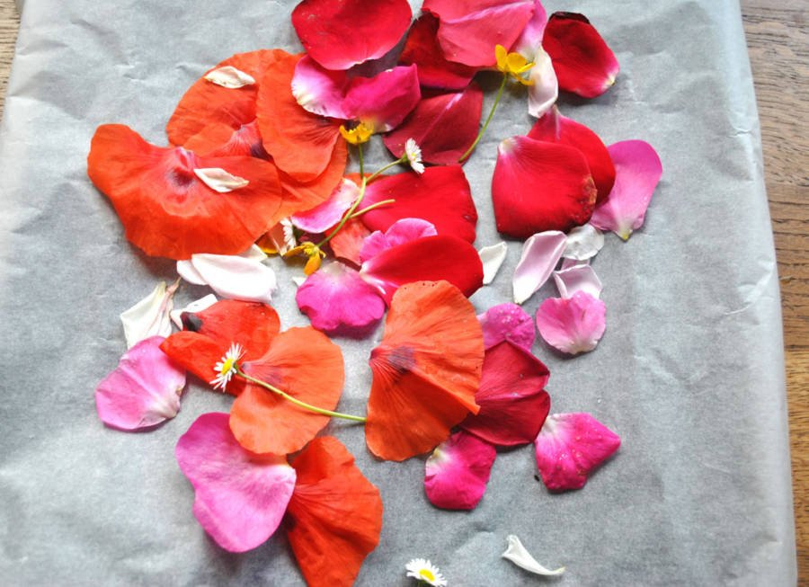 Making natural petal confetti
