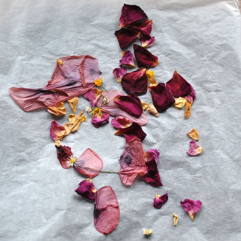 Oven-dried petals for confetti