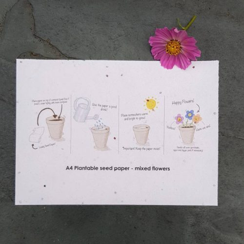 A4 seed paper