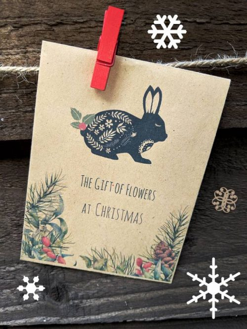 Rabbit seed packet Christmas card