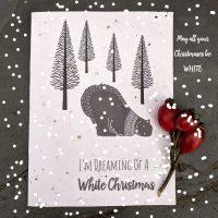 Polar bear seed paper christmas card