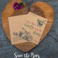 Seeds for the bees seed packet wedding favour