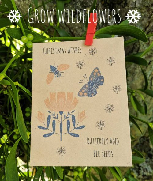 Butterfly and bee seeds Christmas cards