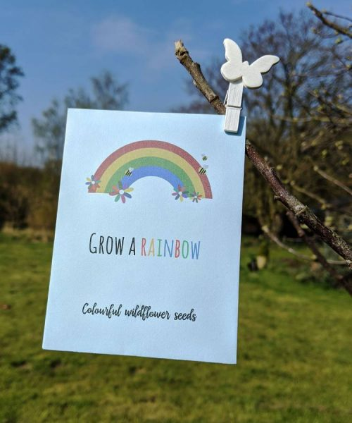 Blue rainbow seed packet