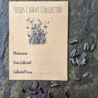 Collecting seeds