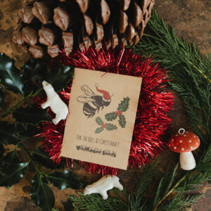 Bee seed packet Christmas cards