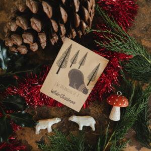 Seed packet polar bear Christmas cards