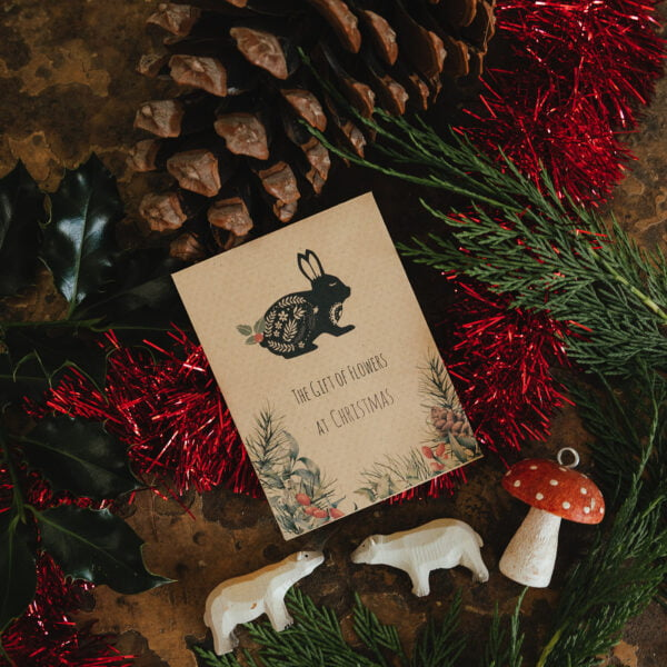 Alternative seed packet Christmas cards - rabbit