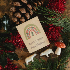 Rainbow seed packet Christmas cards