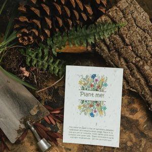 Plant me seed paper postcard