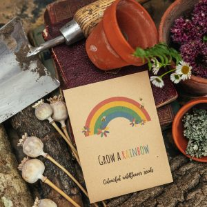 Rainbow seed packet gift