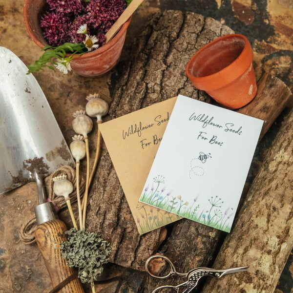 Wildflower seeds for bees