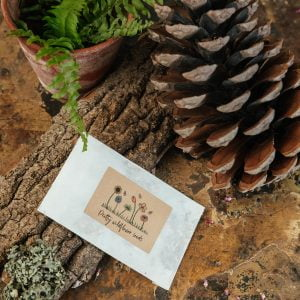 Glassine wildflower seed packet