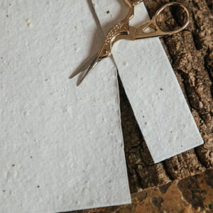 Novelty bee seed paper
