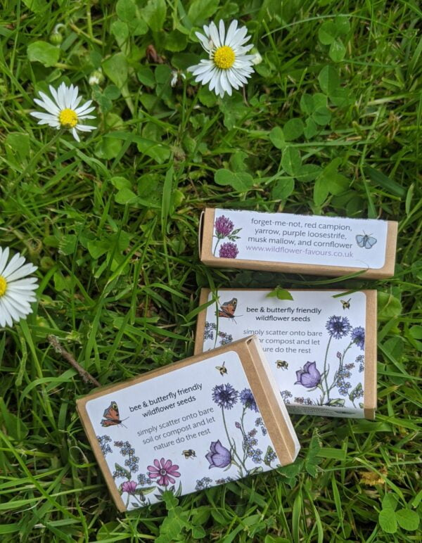 Wildflower Favours seed balls