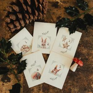 Woodland seed packets Adevnt calendar
